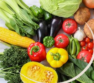 無農薬野菜でしっかりランチ!